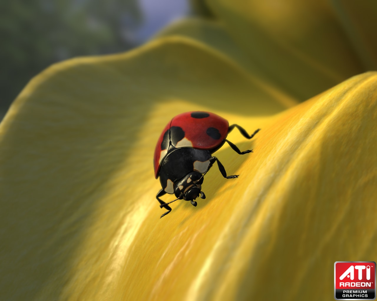 Radeon™ HD 5000 Series Graphics Real-Time Demos - Ladybug demo